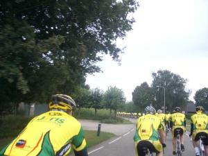 lang groen-geel lint bij Lerop