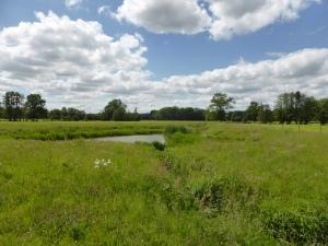 het mooie Belgisch- Brabantse landschap