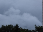 7.30 uur: erg donkere wolken boven het paparazzipleintje
