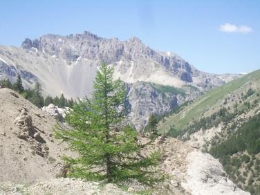 2008 mnt ventoux - alpen 089